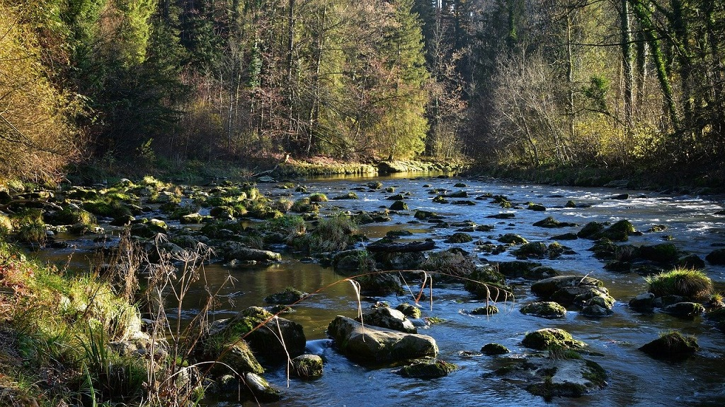 secrets for perfect nature photos